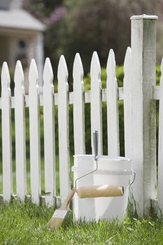 whitewashed fences