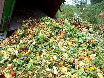 food+waste+2