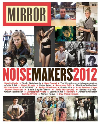 mirror cover2