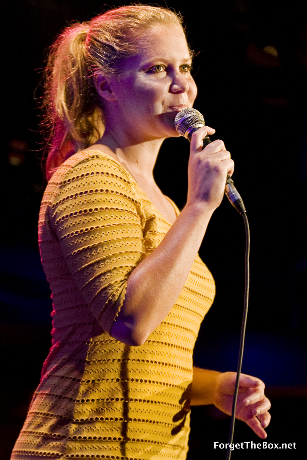 Amy Schumer performs at Katacombes on July 26, 2012