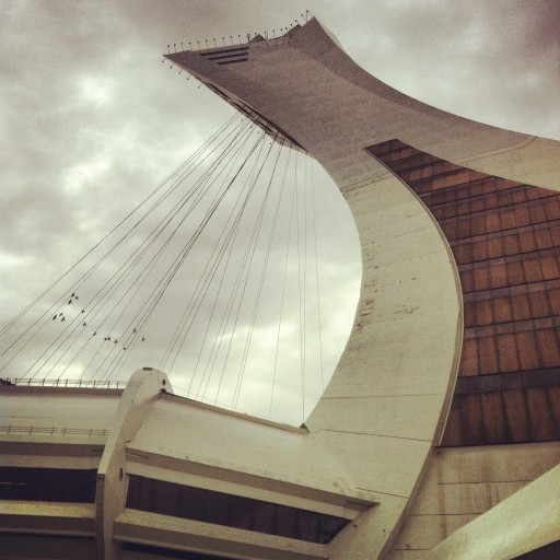 Olympic Stadium Montreal birds instagram