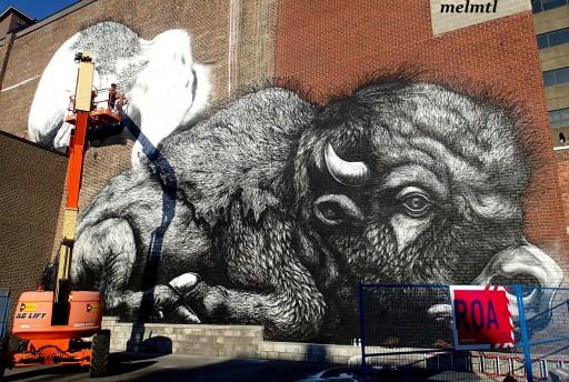 roa mural montreal