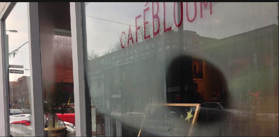 cafe bloom