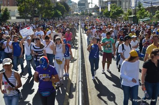 Venezuela Protests 2014 (11)