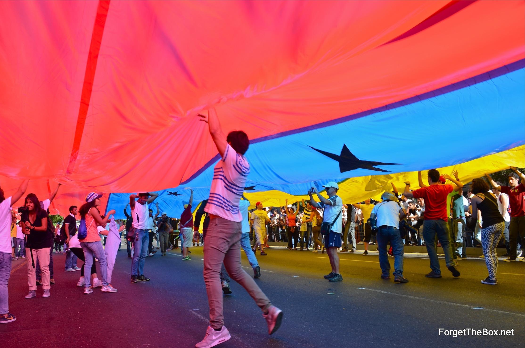 Venezuela Protests 2014 (9)