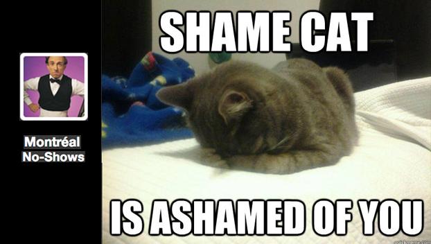 shame-cat