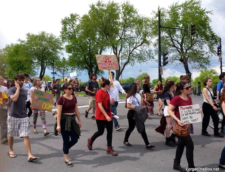 Montreal Anti-Monsanto March 2014 (3)