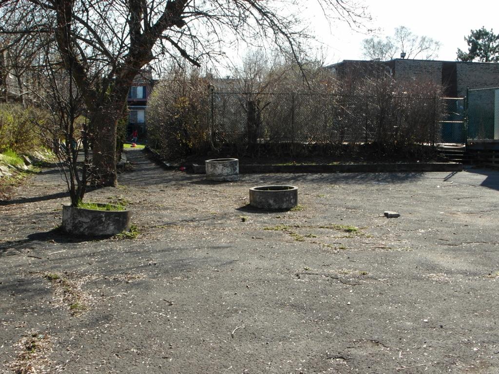 somervale gardens 2014 desolate