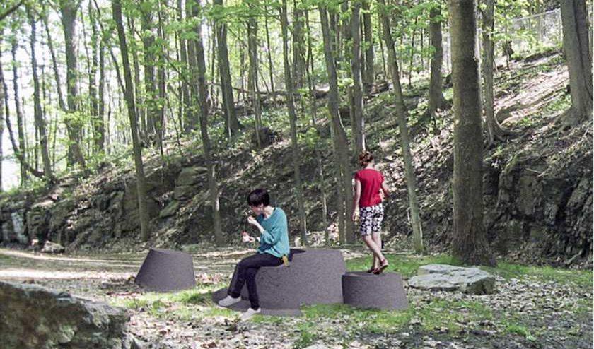 granite tree stumps mount royal montreal